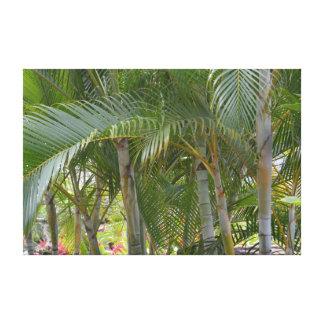 Tropische Palmen Kauais Leinwanddruck