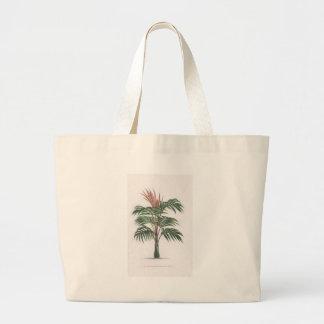 tropische Palmesammlung - Zeichnen von V Taschen