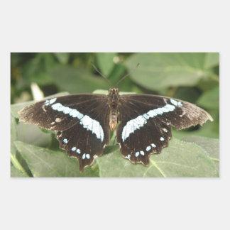 Tropische Schmetterlings-Schwarzweiss-Aufkleber Rechteckiger Aufkleber