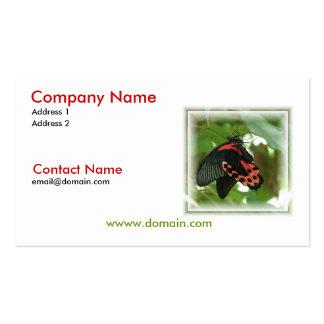 Tropische Schmetterlings-Visitenkarte