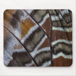 Tropische Schmetterlingsnahaufnahme Browns Mousepad