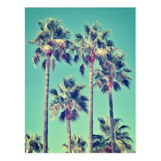 Tropische Vintage Palmen Postkarte