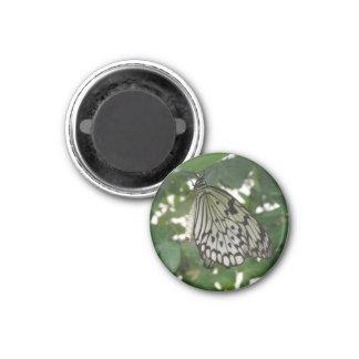 Tropischer Papierdrachen-Schmetterlings-Magnet Runder Magnet 2,5 Cm