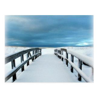 Tropischer Winter Postkarten