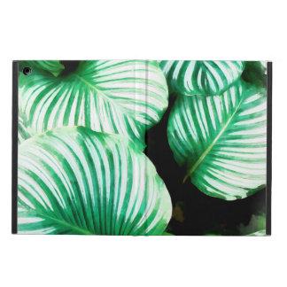 Tropisches Blätter