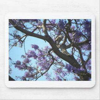 Tropisches Blumen-Baum-blauer Himmel-Foto Hawaiis Mousepad