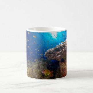 Tropisches Fisch-Great Barrier Reef Korallenmeer Kaffeetasse