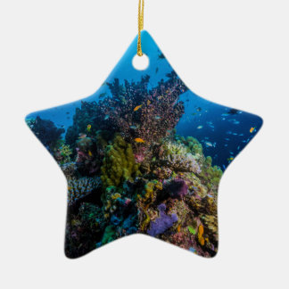 Tropisches Fisch-Great Barrier Reef Korallenmeer Keramik Ornament