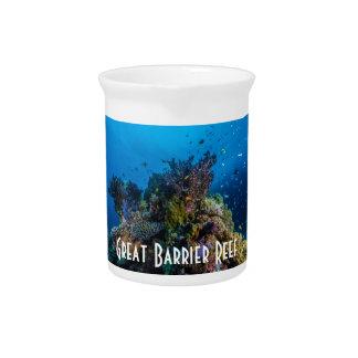 Tropisches Fisch-Great Barrier Reef Korallenmeer Krug