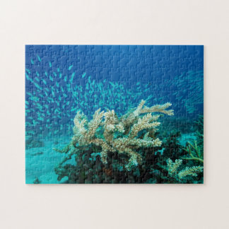 Tropisches Fisch-Great Barrier Reef Korallenmeer Puzzle
