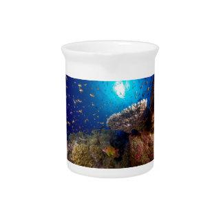 Tropisches Fisch-Great Barrier Reef Krug