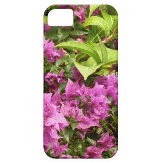 Tropisches lila Bouganvilla Etui Fürs iPhone 5