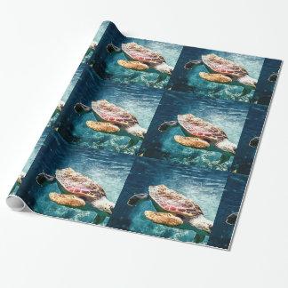 Tropisches Meeresschildkröte-Tauchen in den blauen Geschenkpapier