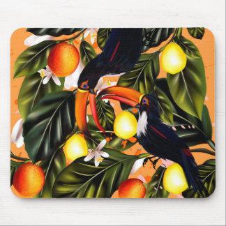 Tropisches Paradies. Toucans und Zitrusfrucht Mauspad