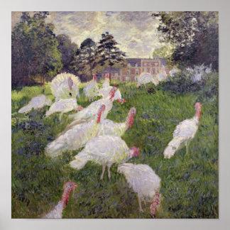 Truthähne Claude Monets | bei Chateau de Poster