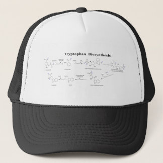 Tryptophan-Biosynthese-Diagramm Truckerkappe