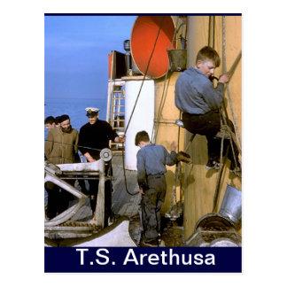 Arethsua geschenke for Ts arethusa pictures