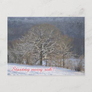 Frohe Weihnachten Und Ein Gutes Neues Jahr Tschechisch.Tschechische Postkarte Des Neuen Jahres