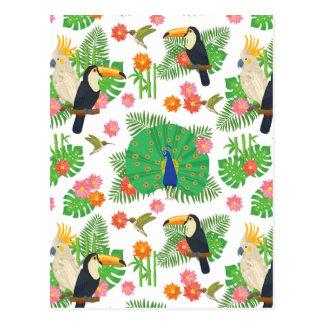 Tucan und Pfau-Muster Postkarte