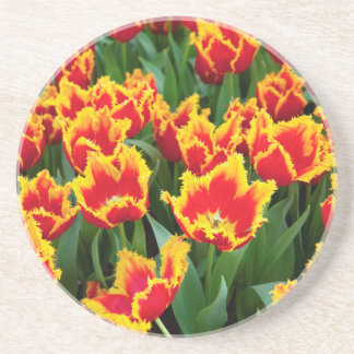 Tulipa Fabio, Keukenhof, die Niederlande Sandstein Untersetzer