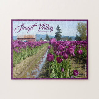 Tulpe-Felder (lila) u. Scheune (Skagit Tal) Puzzle