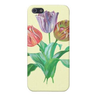 Tulpe-Trio Hülle Fürs iPhone 5
