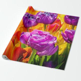 Tulpe-Verzaubern bunt Geschenkpapier