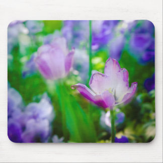 Tulpegarten, Giverny, Frankreich Mousepads