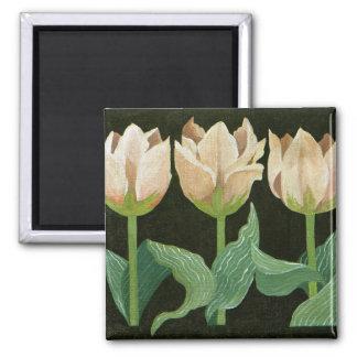 Tulpen 2013 quadratischer magnet