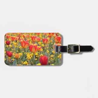 Tulpen, helles und buntes Gelbes und Rot Gepäckanhänger