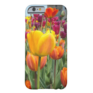 Tulpen im Brise iPhone 6 Fall Barely There iPhone 6 Hülle