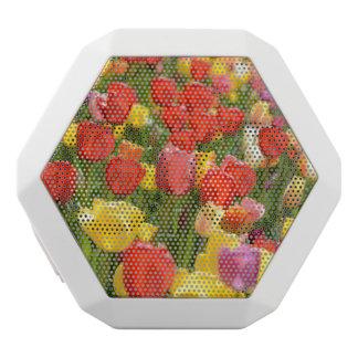 Tulpen im Garten Weiße Bluetooth Lautsprecher