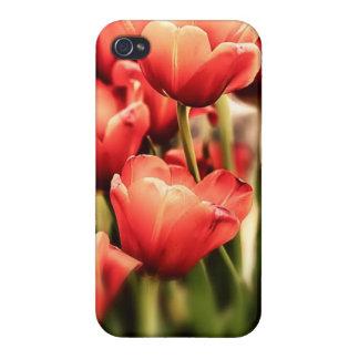 Tulpen in künstlerischem Pastellfarbnahem hohem Schutzhülle Fürs iPhone 4