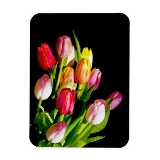 Tulpen Magnet