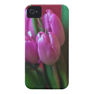 Tulpen Poesie in Rosa iPhone 4 Hülle