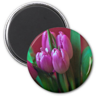 Tulpen Poesie in Rosa Runder Magnet 5,7 Cm