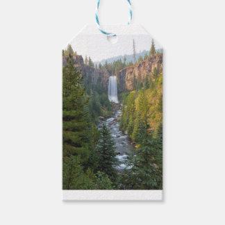 Tumalo fällt in Biegung Oregon Geschenkanhänger