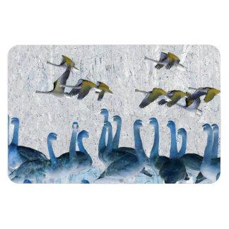Tundra-Schwan-Vogel-Tier-Tiere Magnet