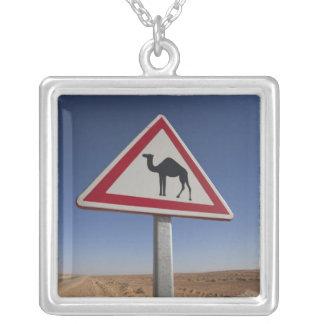 Tunesien, Ksour Bereich, Ksar Ghilane, großartiges Versilberte Kette