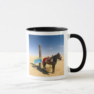 Tunesien, Ksour Bereich, Ksar Ghilane, Pferd in Tasse