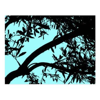 Türkis-Baum-Postkarte Postkarte