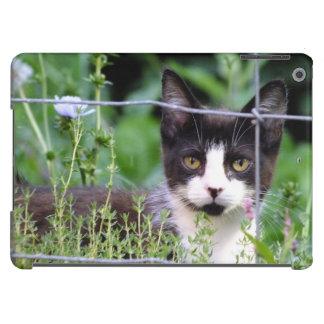 Tuxedo-Kätzchen Xena im Garten-iPad Air ケース