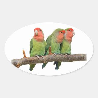 Tweeten Trio-Aufkleber Ovaler Aufkleber