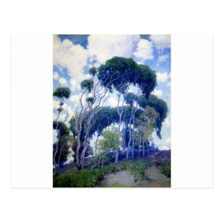Typ-Rose - Laguna-Eukalyptus - Kunst-Meisterwerk Postkarte