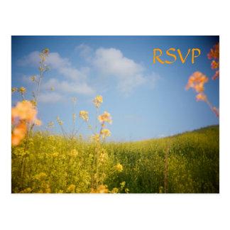 UAWG Postkarten-Blumen-Feld Postkarte