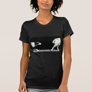Üben Sie Ihre Leidenschaft Border-Collie aus Shirt