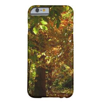 Überdachung der gelben Herbst-Fotografie des Barely There iPhone 6 Hülle