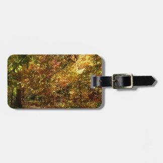 Überdachung der gelben Herbst-Fotografie des Gepäckanhänger