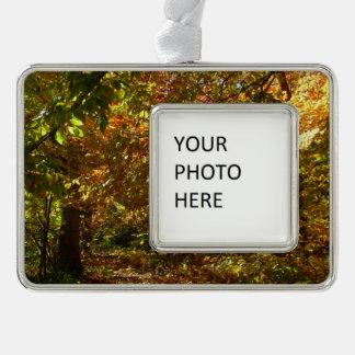 Überdachung der gelben Herbst-Fotografie des Rahmen-Ornament Silber