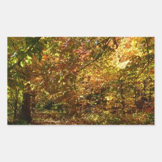 Überdachung der gelben Herbst-Fotografie des Rechteckiger Aufkleber